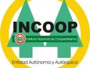 logo oficial del incoop (Custom)